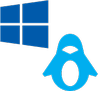 Windows PE and Linux based Recovery Environment